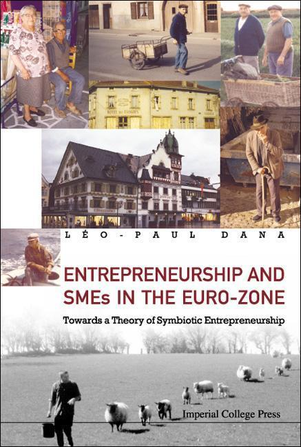 Entrepreneurship and Smes in the Euro-Zone: Towards a Theory of Symbiotic Entrepreneurship als Buch (gebunden)