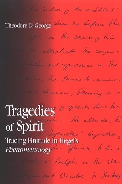 Tragedies of Spirit: Tracing Finitude in Hegel's Phenomenology als Buch (gebunden)