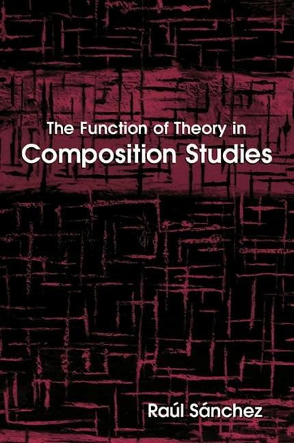 The Function of Theory in Composition Studies als Taschenbuch