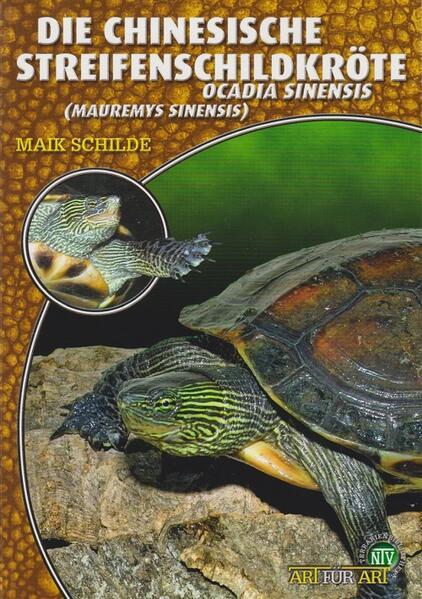Die Chinesische Streifenschildkröte als Buch (kartoniert)