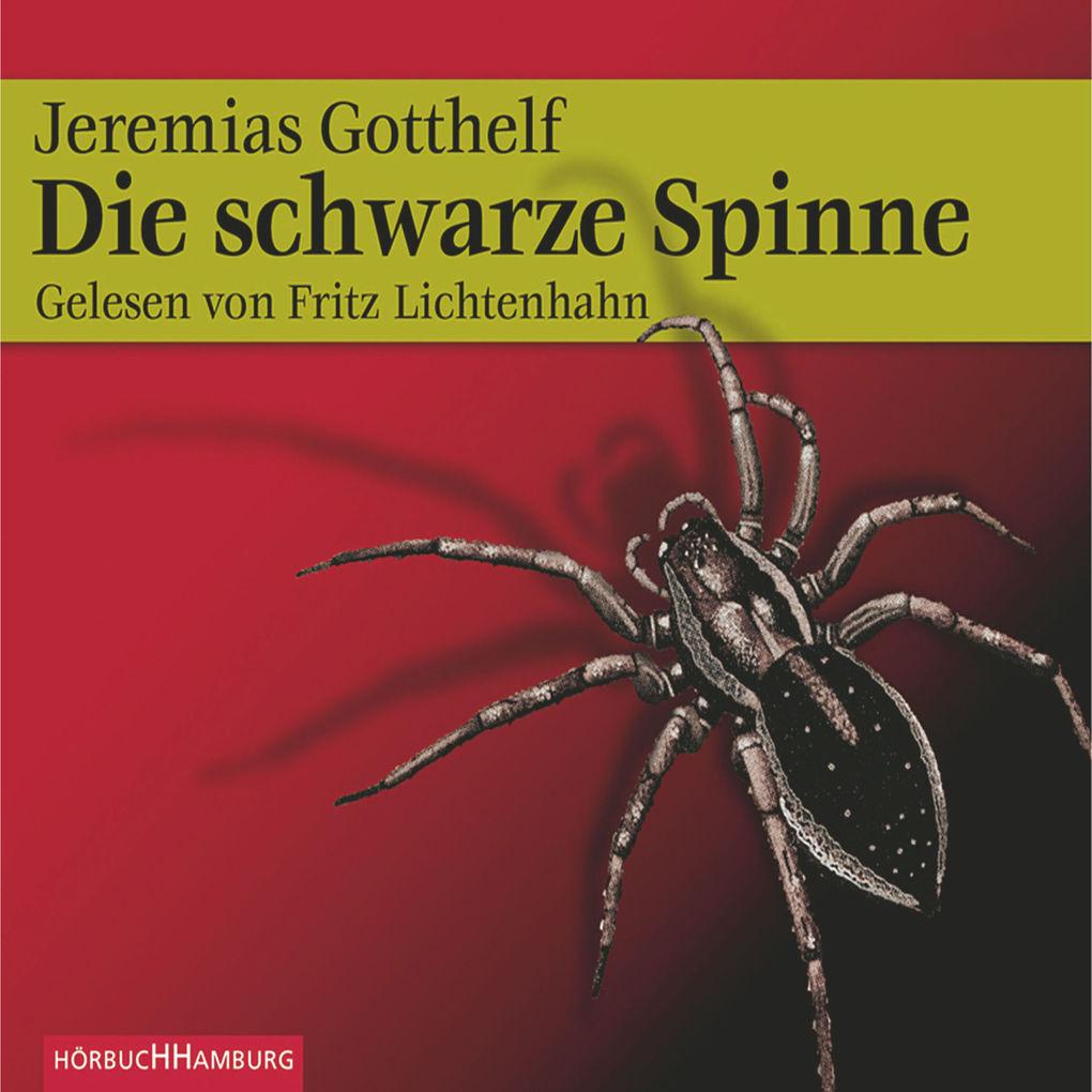 Die schwarze Spinne als Hörbuch Download