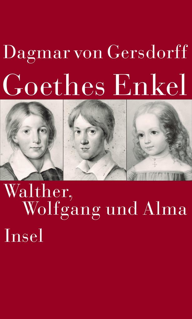 Goethes Enkel als Buch (gebunden)