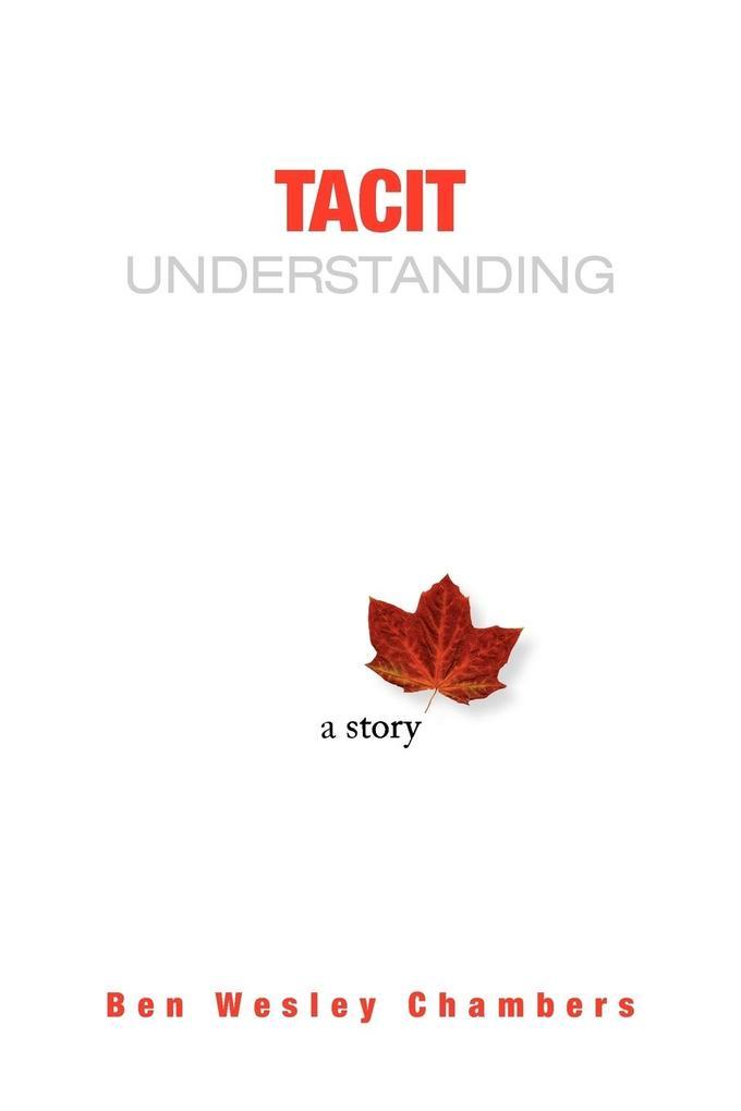 Tacit Understanding als Taschenbuch