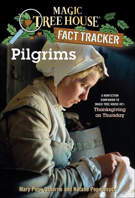 Pilgrims als Taschenbuch