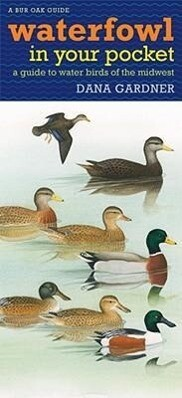 Waterfowl in Your Pocket: A Guide to Water Birds of the Midwest als Blätter und Karten