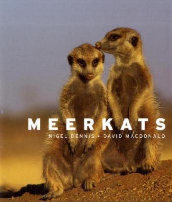 Meerkats als Buch (gebunden)
