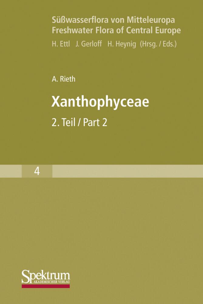 Süßwasserflora von Mitteleuropa, Bd. 04: Xanthophyceae 2 als Buch (kartoniert)