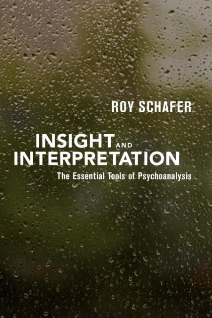 Insight and Interpretation als Taschenbuch