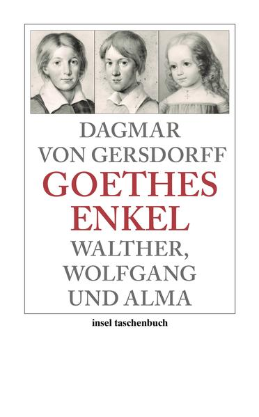 Goethes Enkel als Taschenbuch