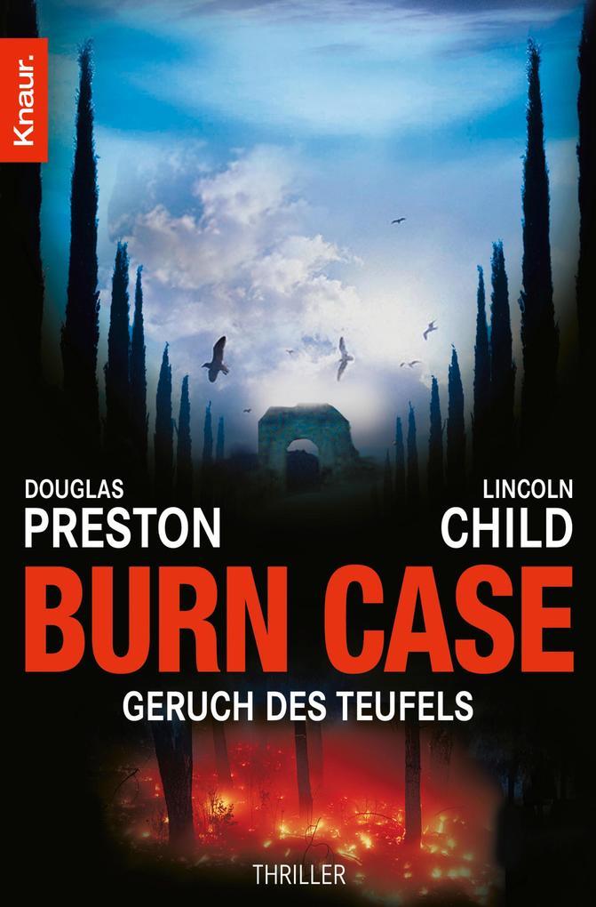 Burn Case als eBook epub