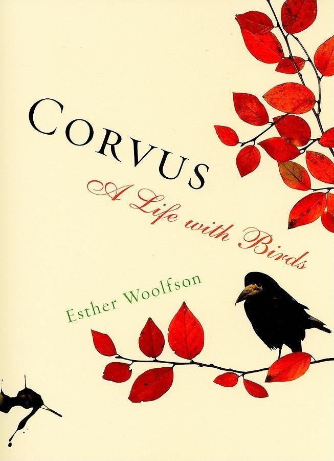 Corvus: A Life with Birds als Taschenbuch